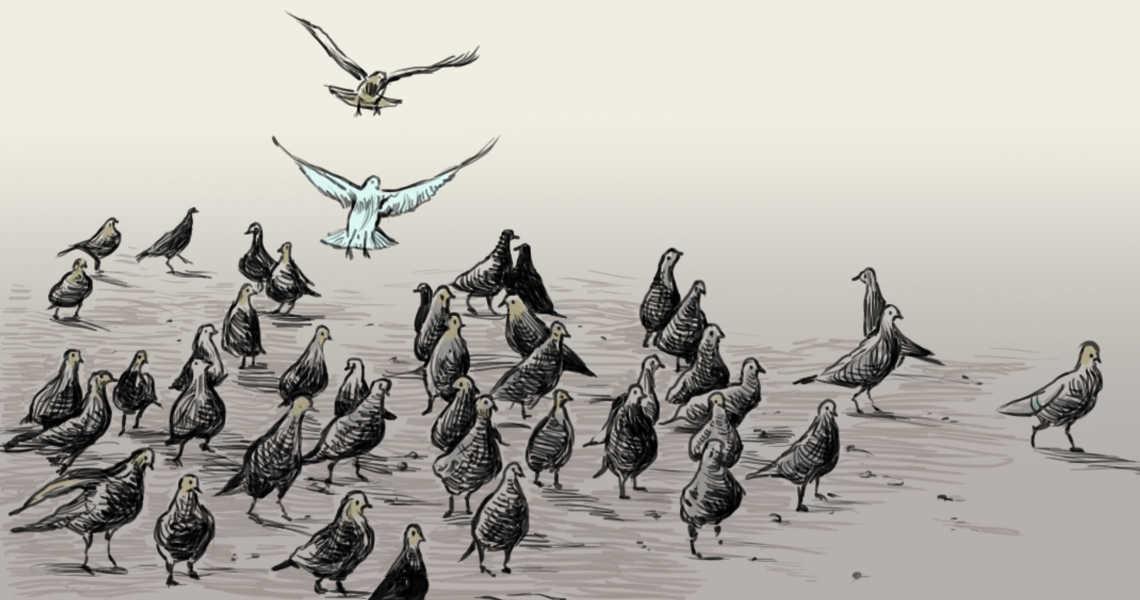 איור: עפרה אייל
