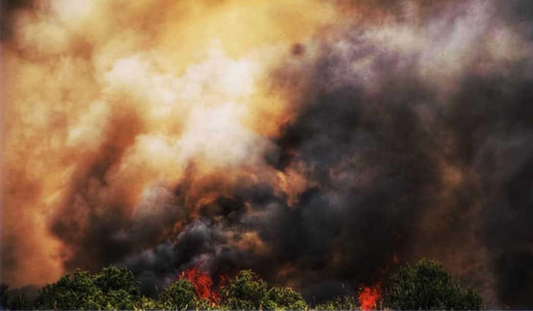 יותר ממאה ימים של אש ועשן
